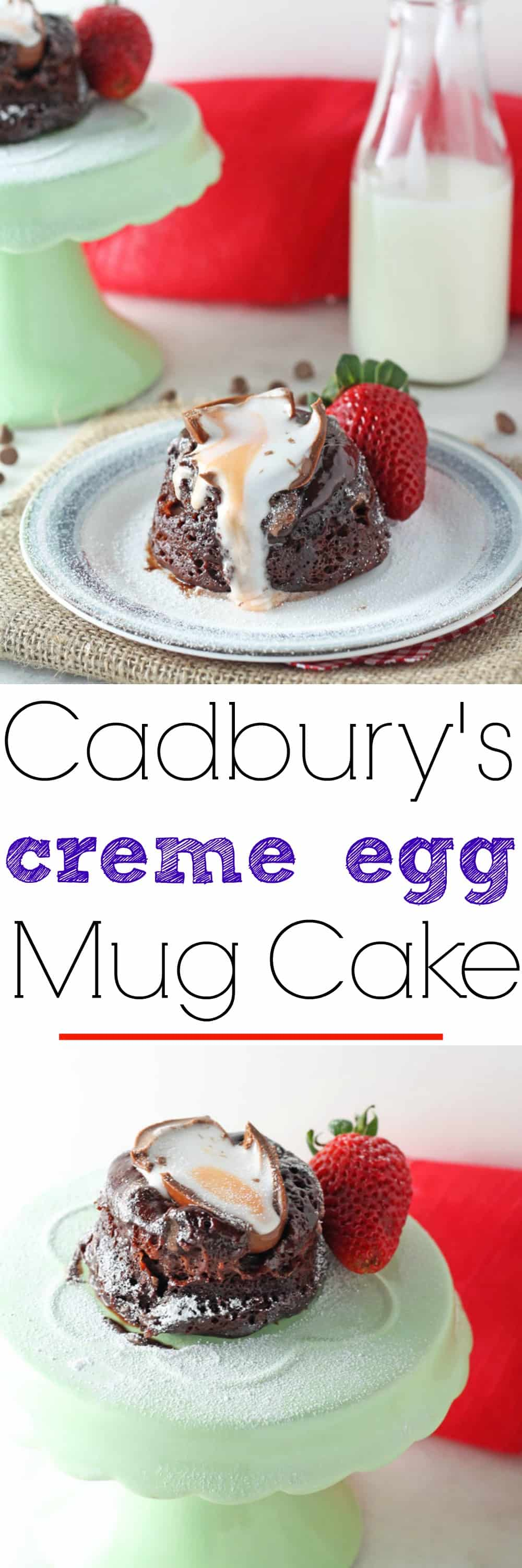 The BEST Chocolate Mug Cake recipe out there!