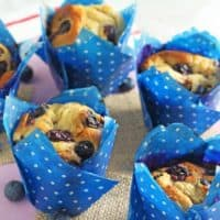 Healthy Oat & Blueberry Blender Muffins