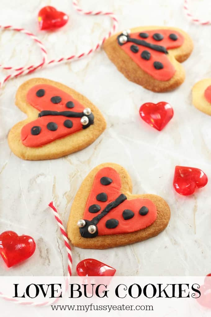 Whether you celebrate Valentine's Day or not, you're going to love these super cute and really easy Love Bug Ladybird Cookies! My Fussy Eater blog