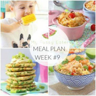 Family Meal Plan Week #9