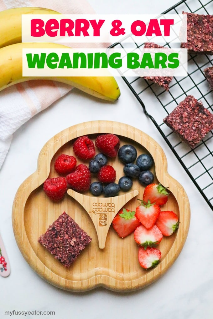 Berry and Oat Baby Led Weaning Bars